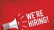 Recruiting 01 Global Business Development Executive